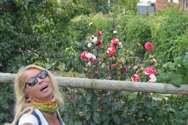 A flower among flowers. Punch drunk after 12 kilometers.