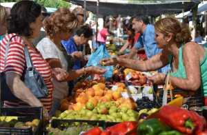 Sahagun market