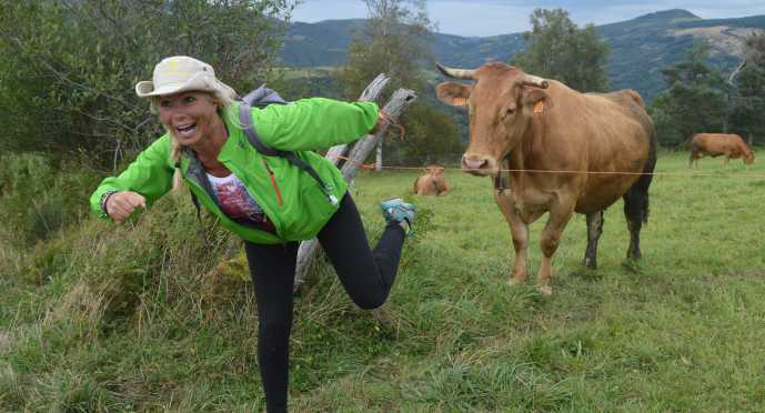 Photo of the day - Jackie running with the cows. (Note-This cow is standing still.)